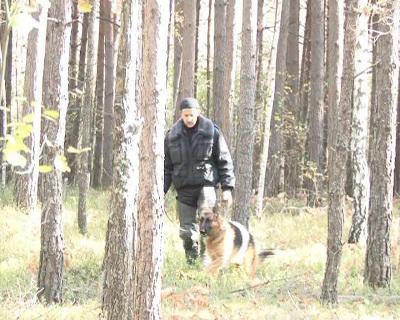 Більше трьох десятків осіб шукали прикарпатського 91-річного пенсіонера, який пішов до лісу та не повернувся