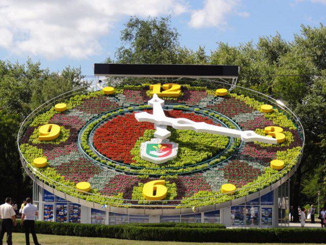 ТОП креативних годинників  Точний час підкажуть квіти  99add76ffa595