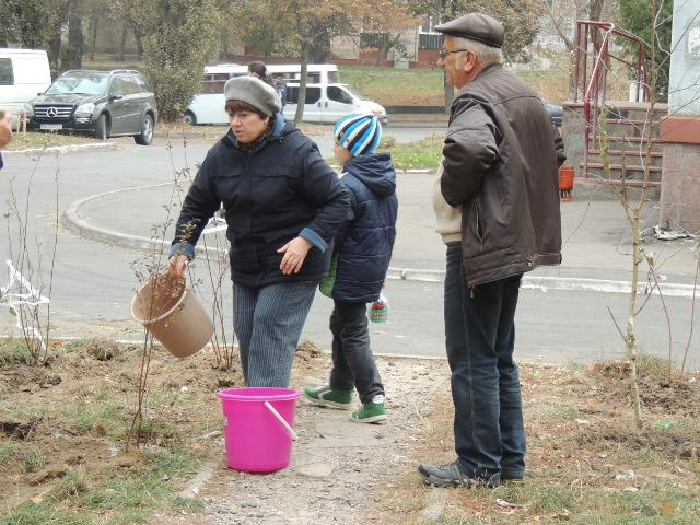 Посадивши дерева, мешканці відразу ж взялися їх поливати, аби гарно росли